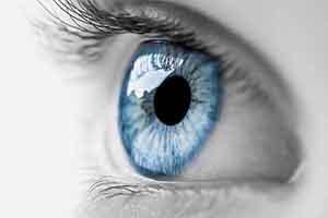 تخصص چشم
