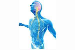 تخصص نورولوژی